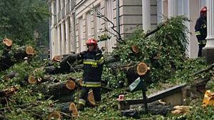 Burza przeszła przez Warszawę [br] Strażacy wciąż pracują