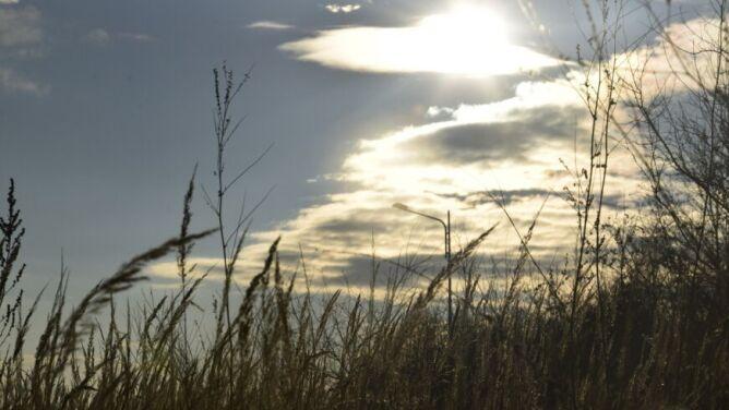 Pogoda na dziś: powieje silniejszy wiatr, do 4 stopni Celsjusza