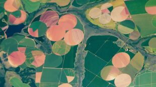 Zaskakująca mozaika widziana z kosmosu